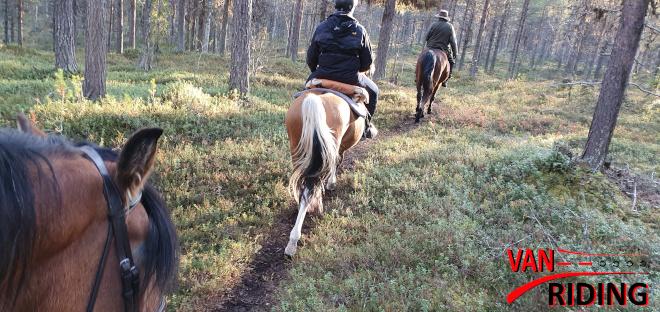 Reiten in schwedisch Lappland